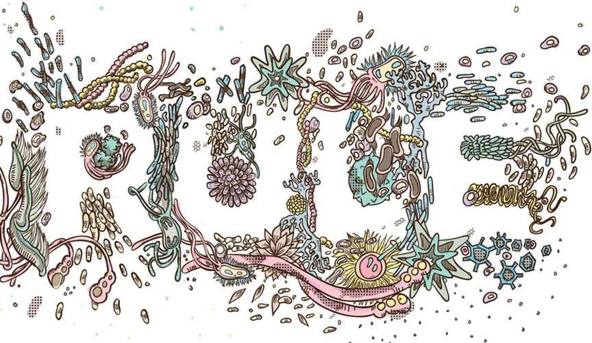 Main Baner Image