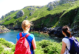 Lundy island: Biology and Psychology students' dissertation field trip