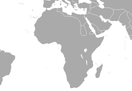 Middle East, Africa and Pakistan