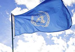 Academics request UN migrant action_thumb.jpg