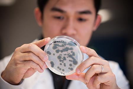 Research bioscience