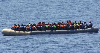 Migrants_thumb.jpg