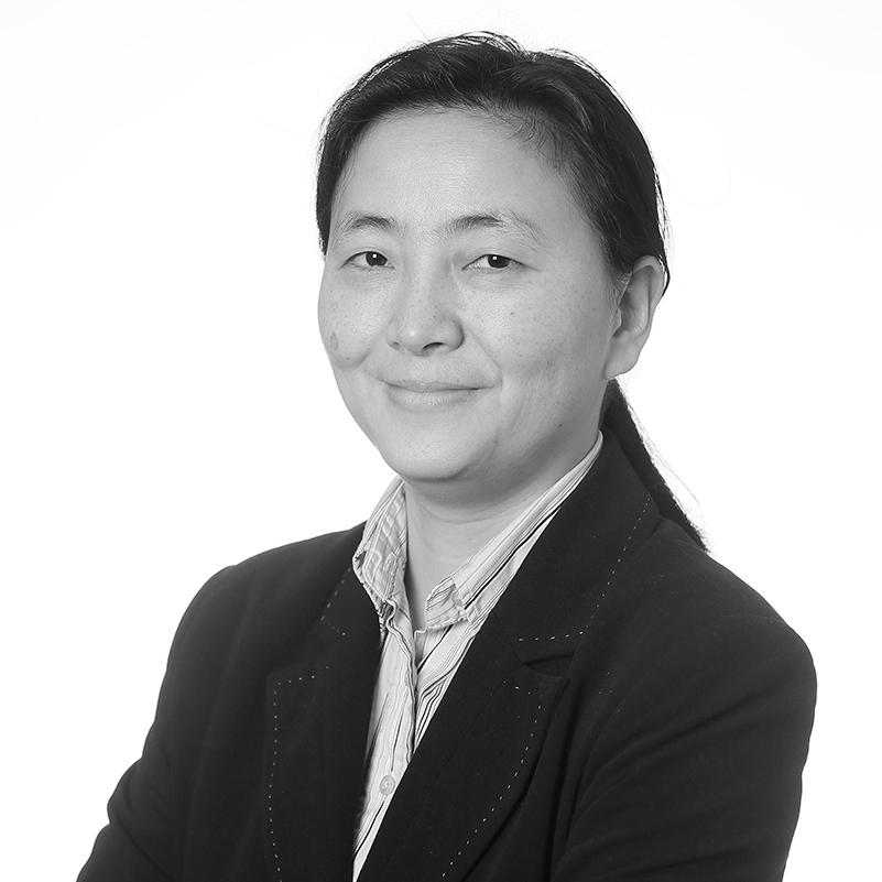 Dr Xufei Zhang