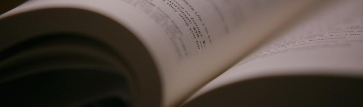 undergraduate language_translation_studies legal_interpreting