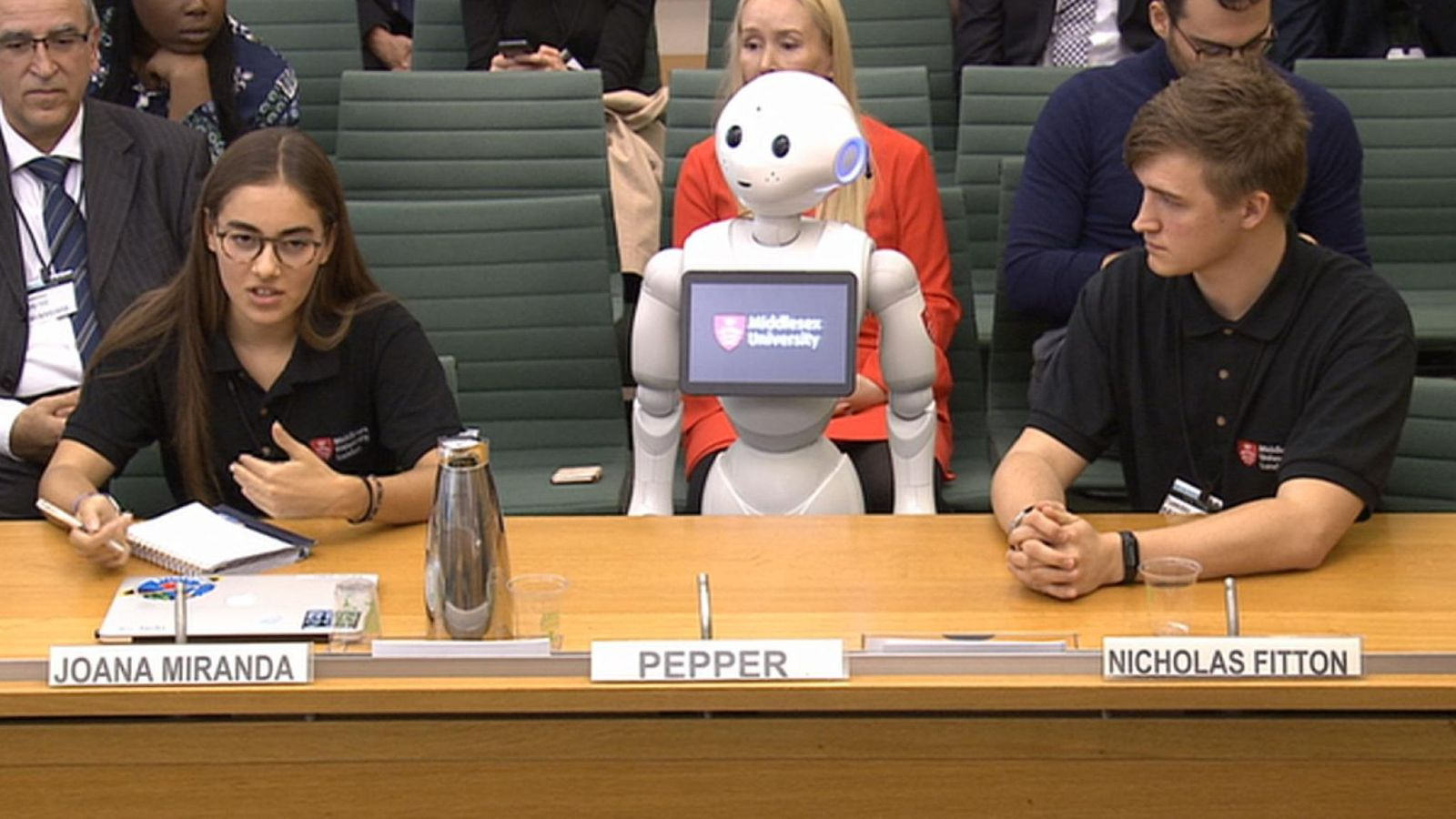 Pepper becomes the first robot to give evidence at the House of Commons