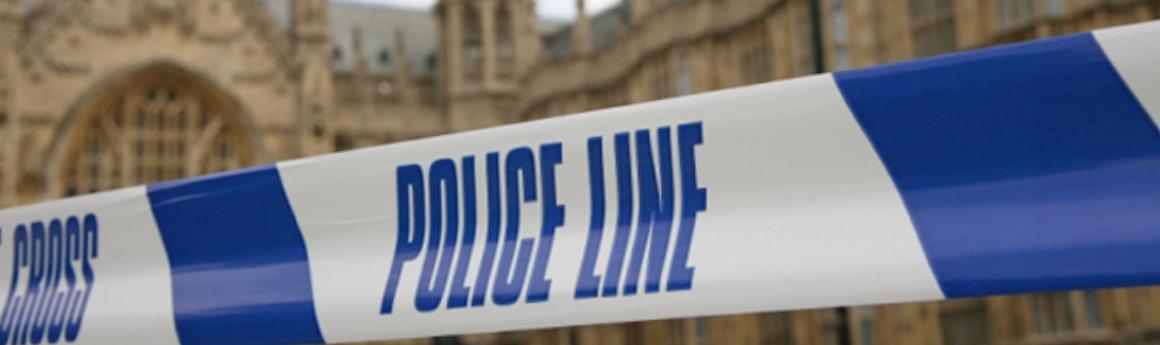 undergraduate crim_soc criminology_policing