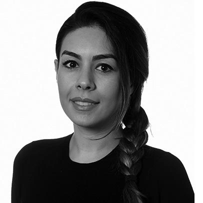 Dr Bahareh Langari