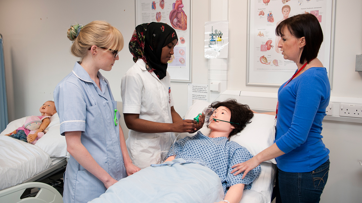 Emotional Intelligence in the Nursing Profession | Journal ...