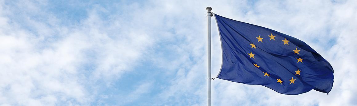 LLM European Law
